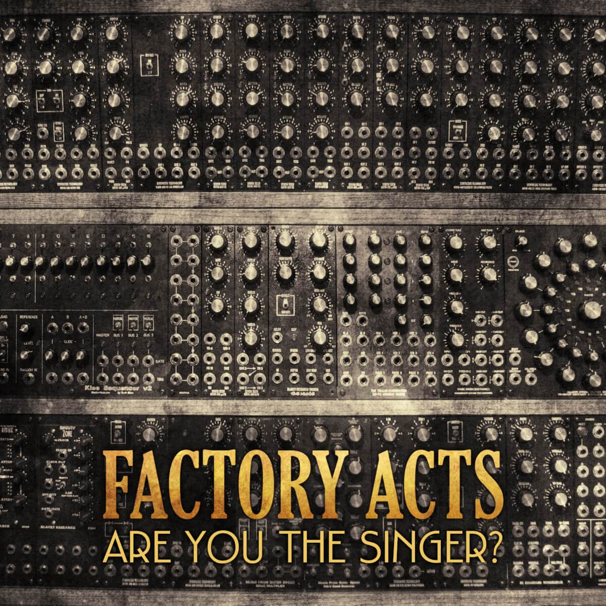 Factory Acts – Are You The Singer?