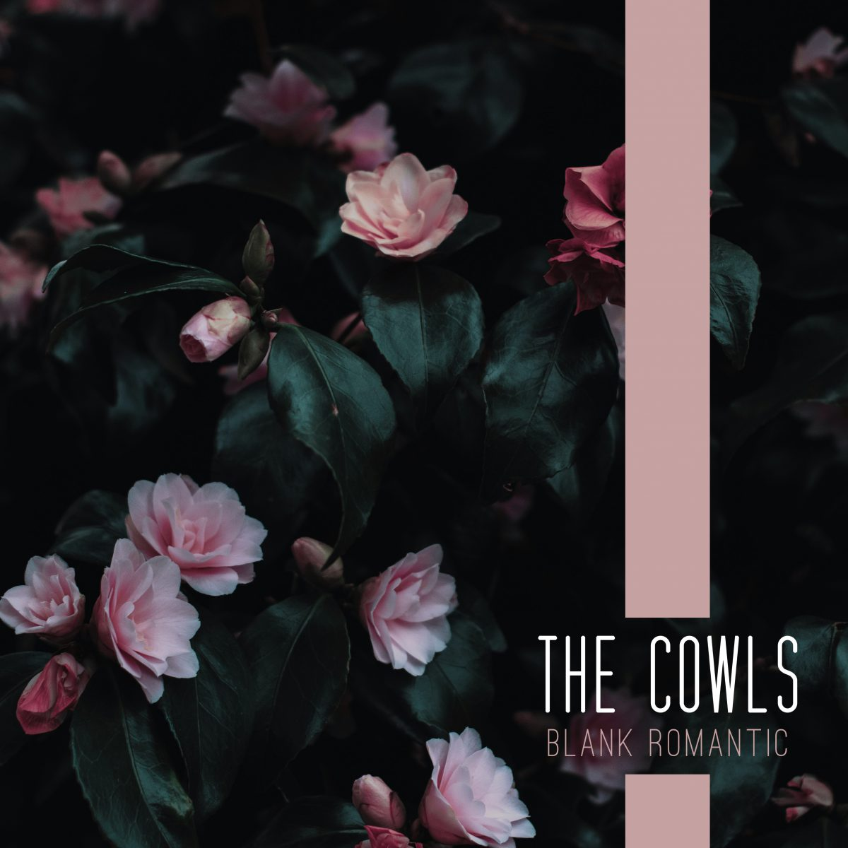 The Cowls – Blank Romantic
